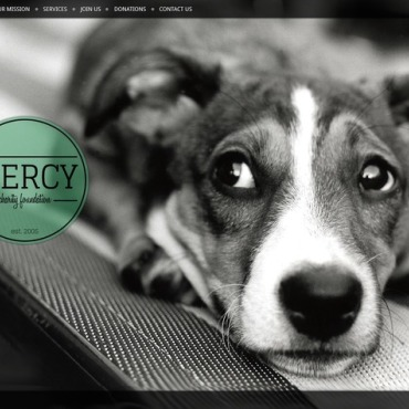 Animal Shelter Website Template