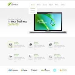 Management Company Responsive Website Template