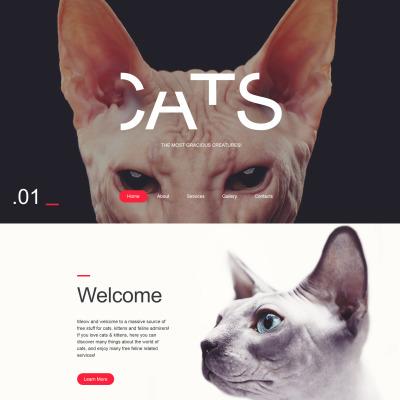 Cat Website Template