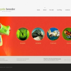 Reptile Joomla Template