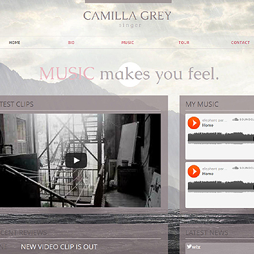 Singer Wix Website Template