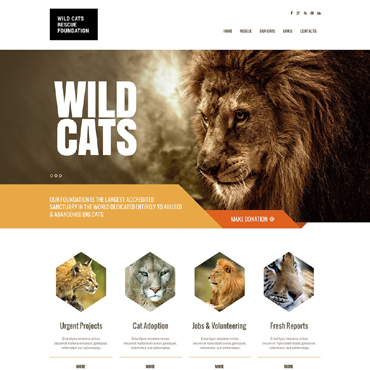 Wild Life Responsive Website Template