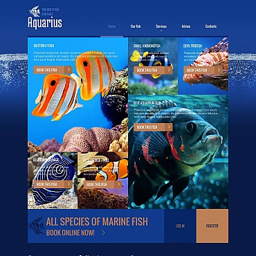 Fish Moto CMS HTML Template