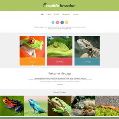 Reptile Responsive Website Template