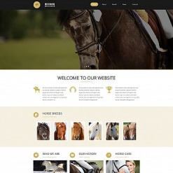 Horse Responsive Moto CMS 3 Template