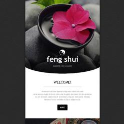 Feng Shui Responsive Newsletter Template
