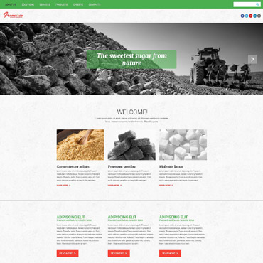 Francisco Sugar Industry Website Template #55240
