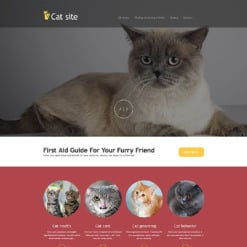 Cat Muse Template